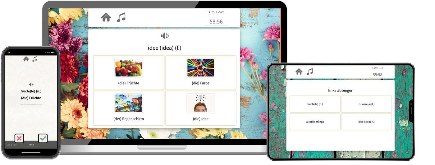 rumaenisch online lernen mit app