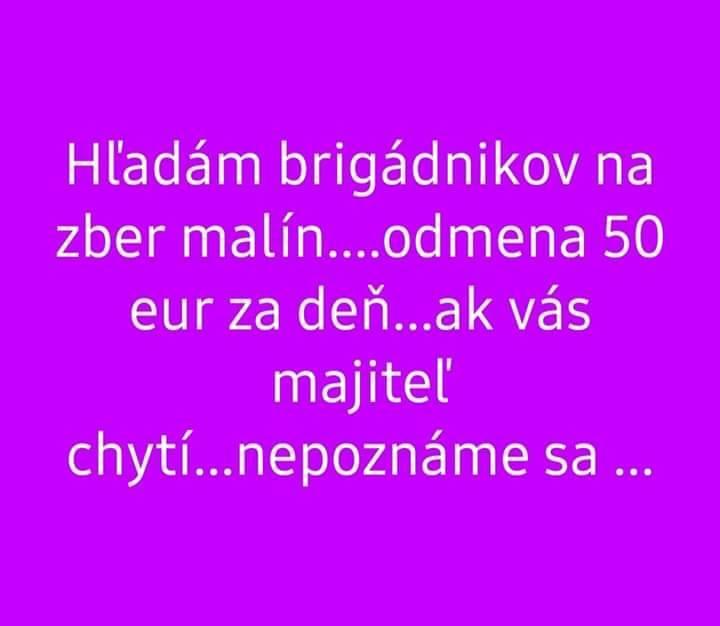 Lernen Sie Slowakisch Hallo Guten Tag Danke Bitte Auf
